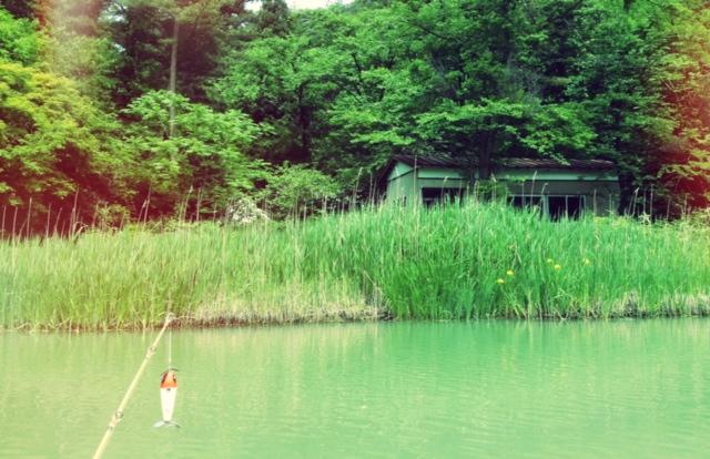130526村上野池